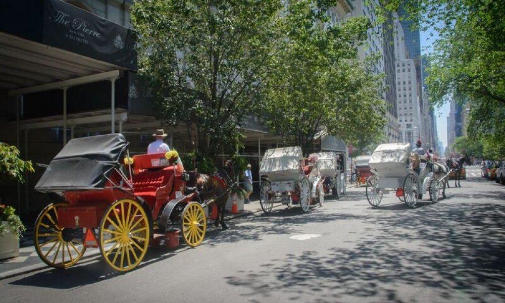 Horse Carriage, NYC, New York, New York City, Central Park, Ride, DMC, Destination Management